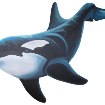 orca large whale wall sticker