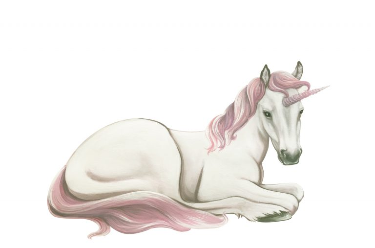 baby unicorn wall sticker