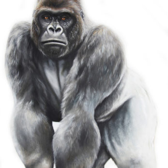 Silverback Gorilla Wall Decal Wall Sticker