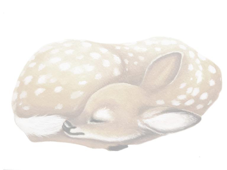 deer wall stickers